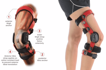 Best Knee Braces